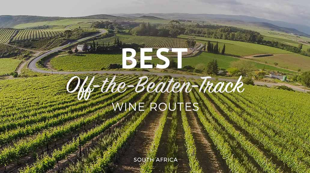best off the beaten track wine routes south africa explore sideways wine tours